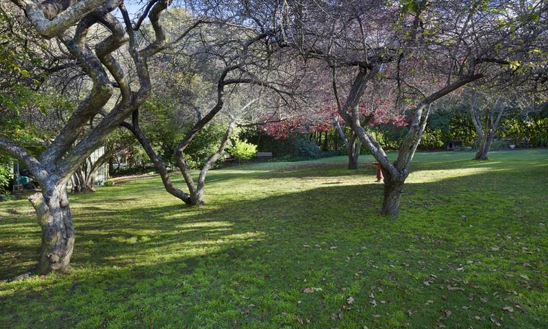 http://assets.boxdice.com.au/duncan_hill_property/listings/1305/ea3c7454.jpg?crop=800x480