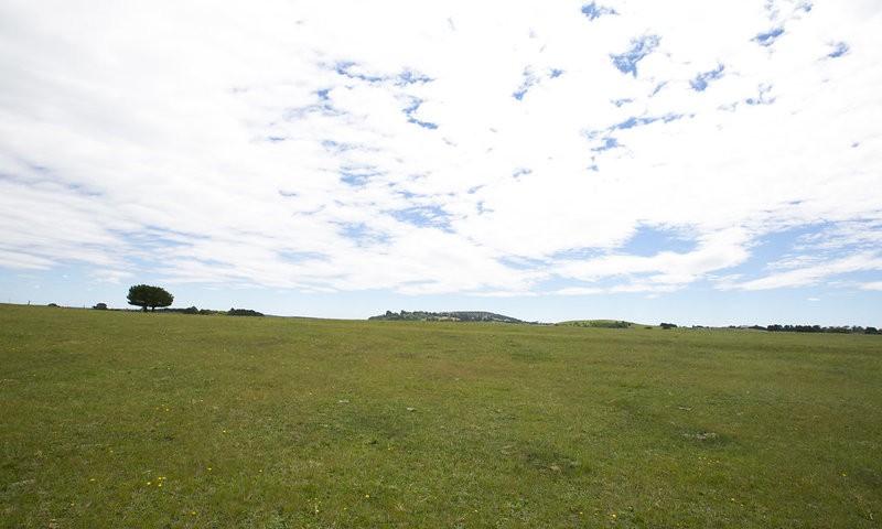 http://assets.boxdice.com.au/duncan_hill_property/listings/1654/ce81f783.jpg?crop=800x480