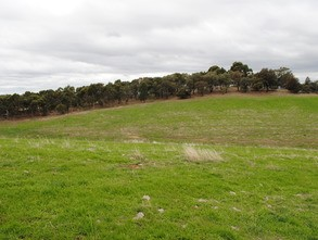 Lot 1/100 The Bridle Track, BROADFORD DISTRICT Rural