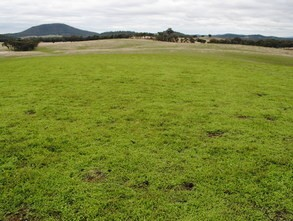 Lot 3/ 200 The Bridle Track, TALLAROOK DISTRICT  Rural