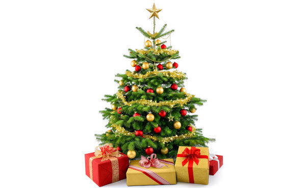 https://assets.boxdice.com.au/bell-re/attachments/173/404/holidays_christmas_508245_xmas_tree3.jpg?6834e99d22cbc3693eec9ed5ea423c13