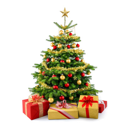 https://assets.boxdice.com.au/bell-re/attachments/42a/b29/holidays_christmas_508245_xmas_tree2.jpg?00e1cff47e0017bf2d58b56bae7797cf