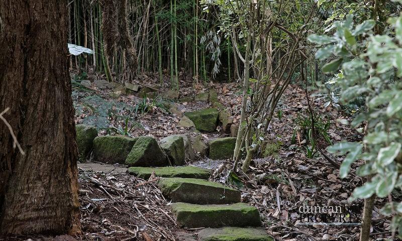 https://assets.boxdice.com.au/duncan_hill_property/listings/970/5479ee1e.jpg?crop=800x480