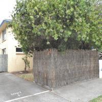 https://assets.boxdice.com.au/haughton_stotts/rental_listings/326/8f812425.jpg?crop=200x200