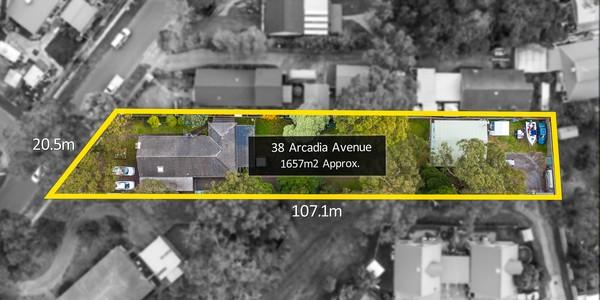 38 Arcadia Avenue