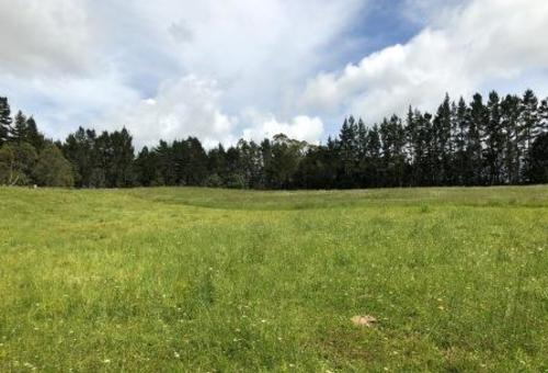 Kirikiri Lane, Waipapa